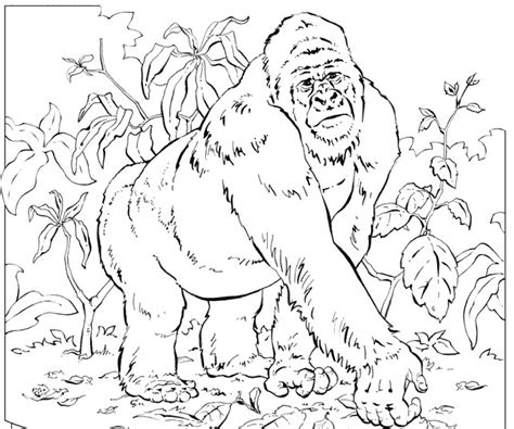 free coloring pages of g for gorilla