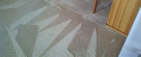 tapijt schiedam tapijtreiniging schiedam tapijtenreiniging