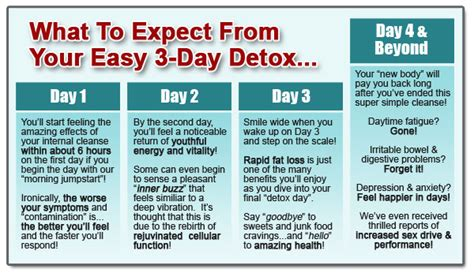 Ease Food Detox Symptoms by 3 Day Cleanse Diet Detox Lost Weight And Feel Tired