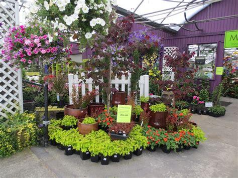 garden nursery wa garden center merchandising display