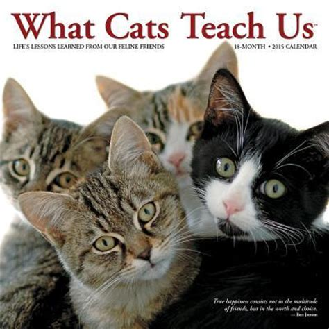 what cats teach us 1682346927 what cats teach us 18 month mini calendar