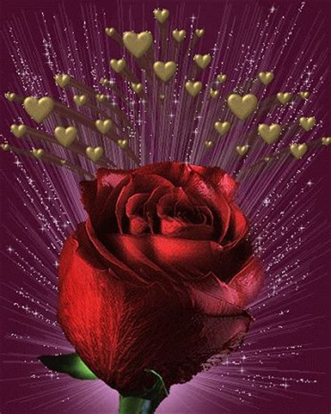 imagenes con movimiento sensual 541 best images about flower animated gifs on pinterest