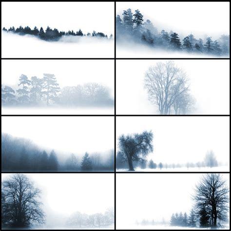 8 tree background patterns photoshop free brushes 24 stylish and natural photoshop brush collections media