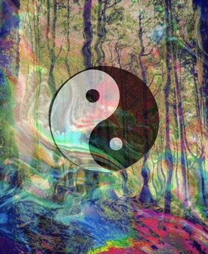 yin yang cool