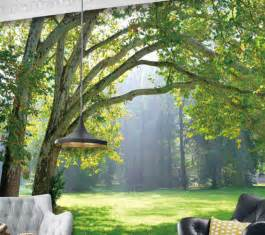 tropical forest green sunshine forest 3d full wall mural high quality the spectacular landscapes mural wallpaper