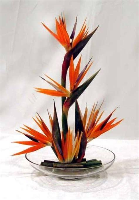 bird of paradise in glass bowl centerpiece rentals orlando