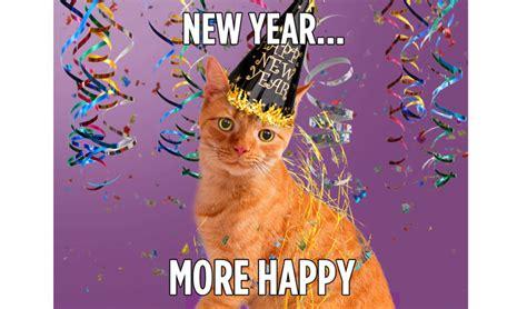 new year ecard hallmark new year happy the cat hallmark channel