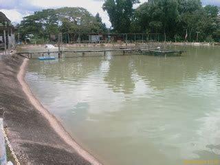 Joran Pancing Untuk Kolam arz one kaki pancing tip tip memancing ikan air masin di kolam berbayar