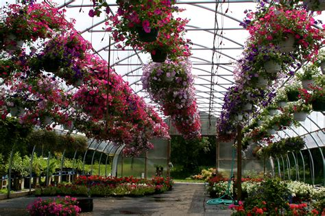 garden centres near me