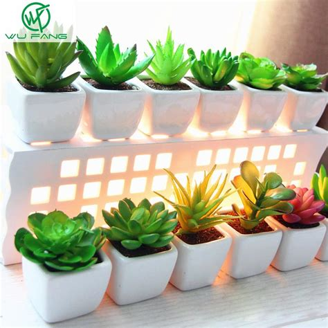 mini potted plants mini potted plant desktop pot white ceramic basin