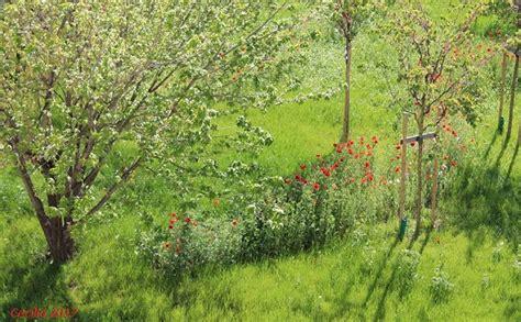 testo giardini di marzo marzo in una canzone e un racconto lessico e concordanza