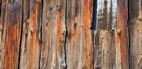 tree branch floor l tree plank floor thefloors co