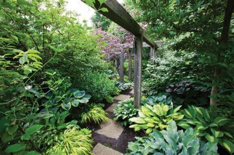 Garten Schattenpflanze by 6 Arten Schattenpflanzen F 252 R Einen Wundersch 246 Nen Garten