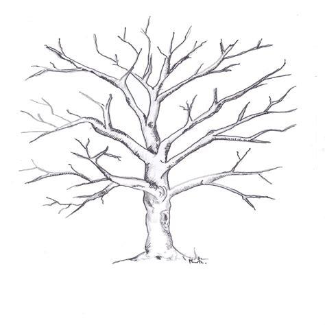 imagenes de arboles zen 98 ideas dibujo de un tronco de arbol para colorear on
