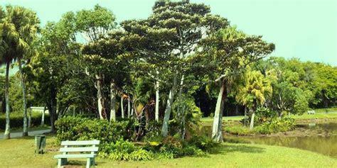 Botanical Garden Mauritius Mauritius National Botanical Garden Mauritius Attractions