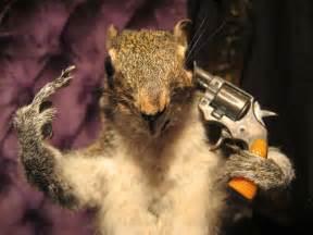 Good Lighting disturbing taxidermy displays dead squirrel