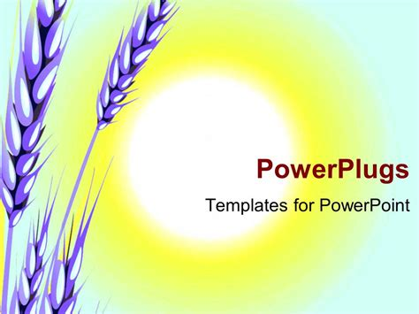 ppt themes sun powerpoint template the crop of wheat with a sun in the