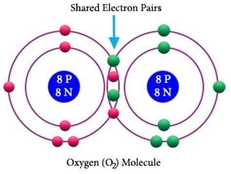 what are the exles of covalent bond chemistry