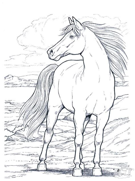 coloring pages of real horses best 25 horse coloring pages ideas on pinterest adult