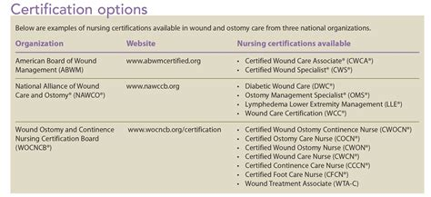 sle resume for nurses newly graduated wound care for nurses philippines best 2018