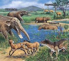animal during great ice age 1000 images about ice age animals on pinterest