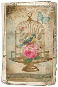 Bathroom Cross Stitch Patterns Free Free Printable Birdcage Art Card Avalon Rose Design