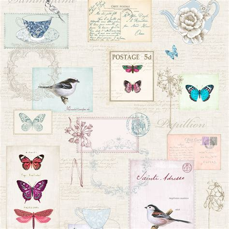 bird wallpaper home decor beautiful birds themed wallpapers in various designs