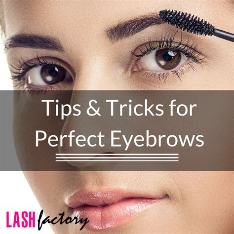 7 Tips For Perfectly Groomed Eyebrows by Tips And Tricks For Eyebrows Lash Factory