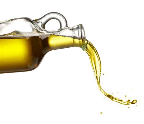 keuntungan   didapat  jual minyak bulus asli