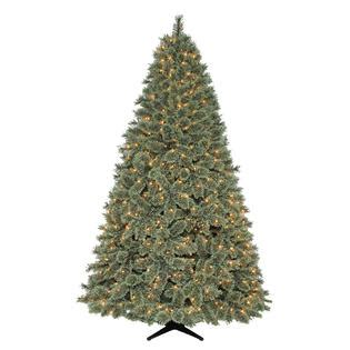 7 5 spruce christmas tree full and shapely trees at kmart