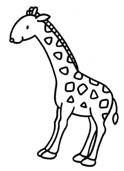 imagenes jirafas para pintar canalred gt plantillas para colorear de animales jirafas