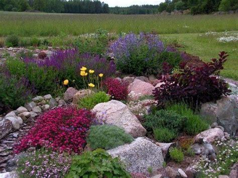 Steingarten Anlegen by 25 Best Ideas About Steingarten Anlegen On