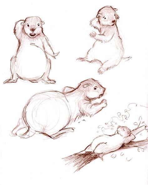 Groundhog Drawing