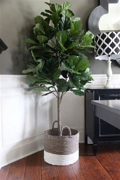 fake plants for home decor best 25 artificial plants ideas on pinterest artificial