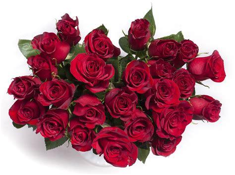 foto fiori rosse foto gratis rosse rosso bouquet immagine