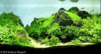 the nature style planted tank aquascape awards