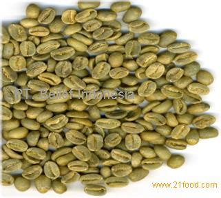 Green Bean Flores Bajawa Arabica flores arabica coffee beans products indonesia flores