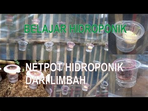 membuat netpot hidroponik membuat netpot hidroponik dari aqua gelas youtube