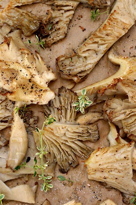 funghi gallinacci come cucinarli i pleurotus come cucinarli foto e fornelli