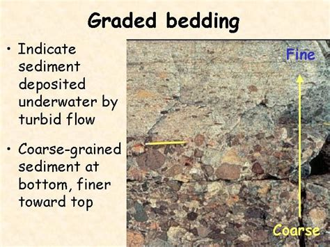 what is graded bedding pinterest the world s catalog of ideas