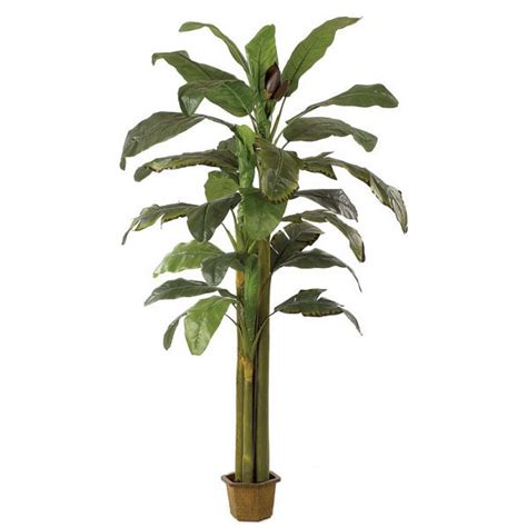 artificial tropical plants and trees 1000 images about tropical paradise on