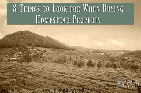 8 Things To Look For In A by 8 Things To Look For When Buying Homestead Property