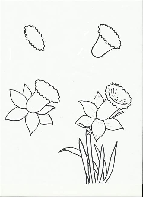 libro drawing made easy flowers art class ideas flowers flowers flowers crafts to do flowers