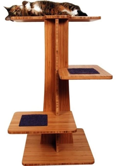 36 quot acacia cat tree modern cat furniture by wayfair