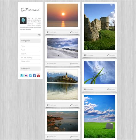 themes and photo polaroid tumblr theme by pixel floss themeforest