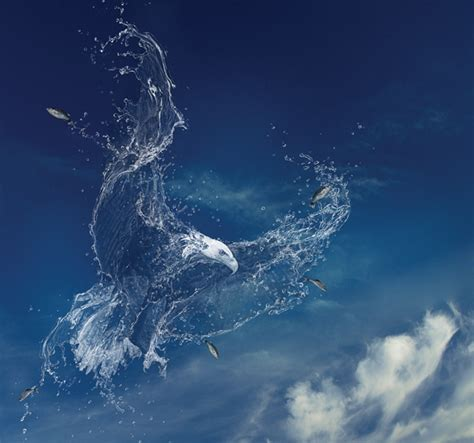 photoshop cs3 water effect tutorial create a water creature photoshop creative photoshop