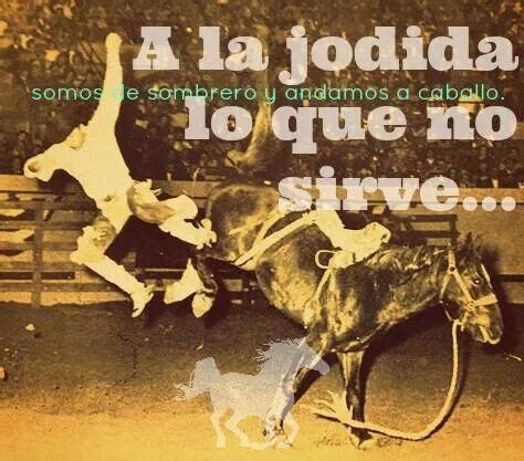imagenes de sogas vaqueras pin by l e aguilar eiav on frases vaqueras y charras