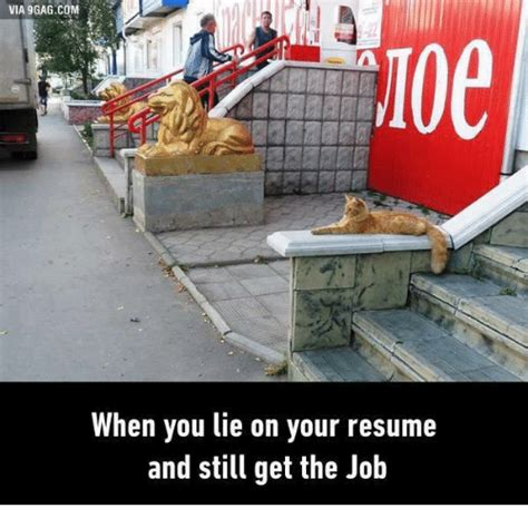 Resume 9gag by Via 9gagcom 100 When You Lie On Your Resume And Still Get