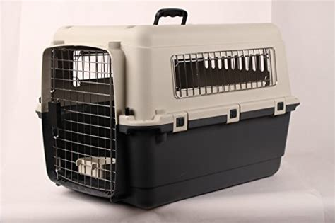 airline crate pet kennel direct 27 quot airline approved plastic cat pet kennel carrier or air