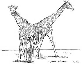 giraffe coloring pages giraffe coloring pages for coloring home